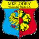 Odra Wodzislaw